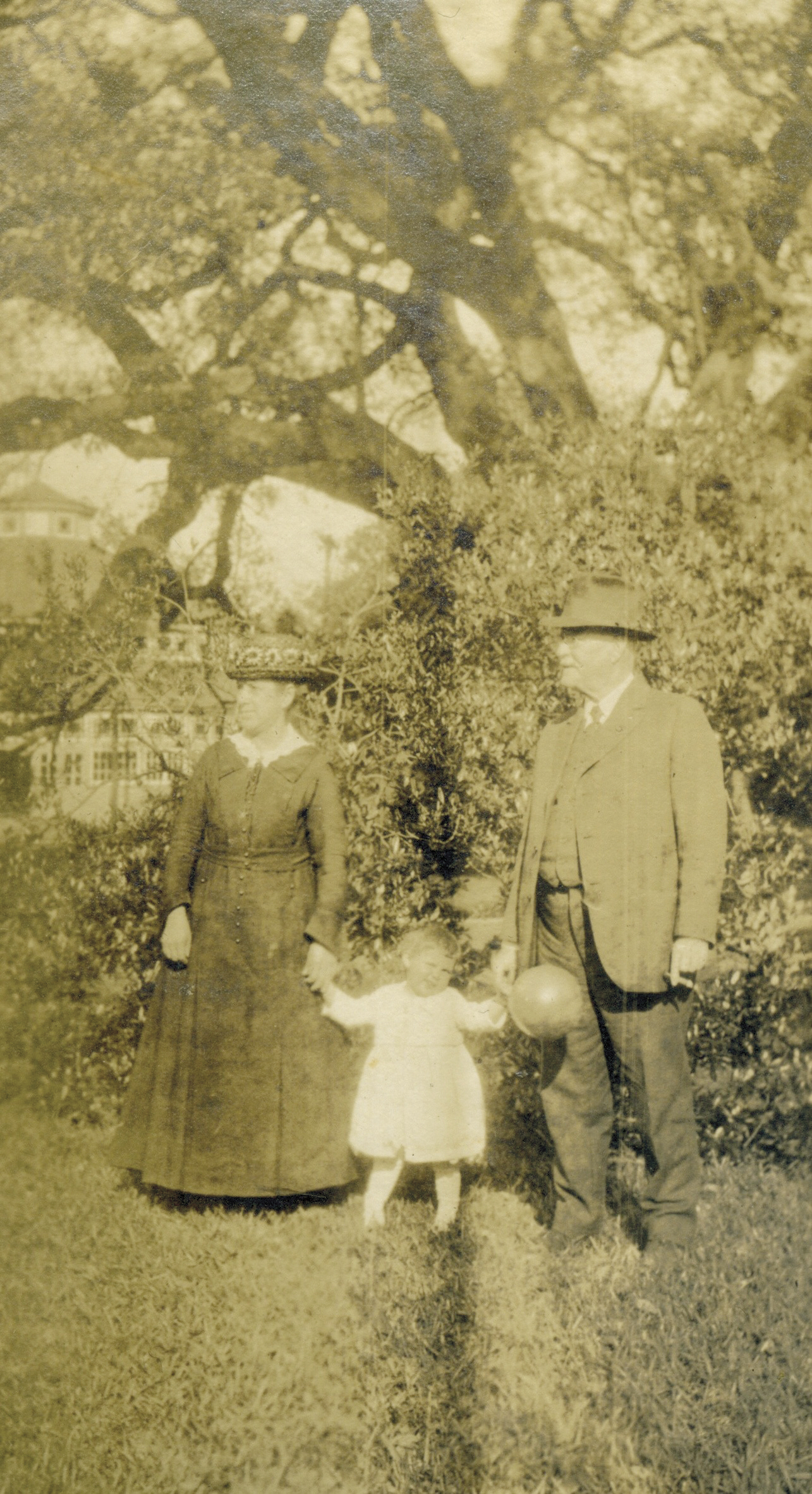 The Liveliest Of Oaks: 300 Years of City Park