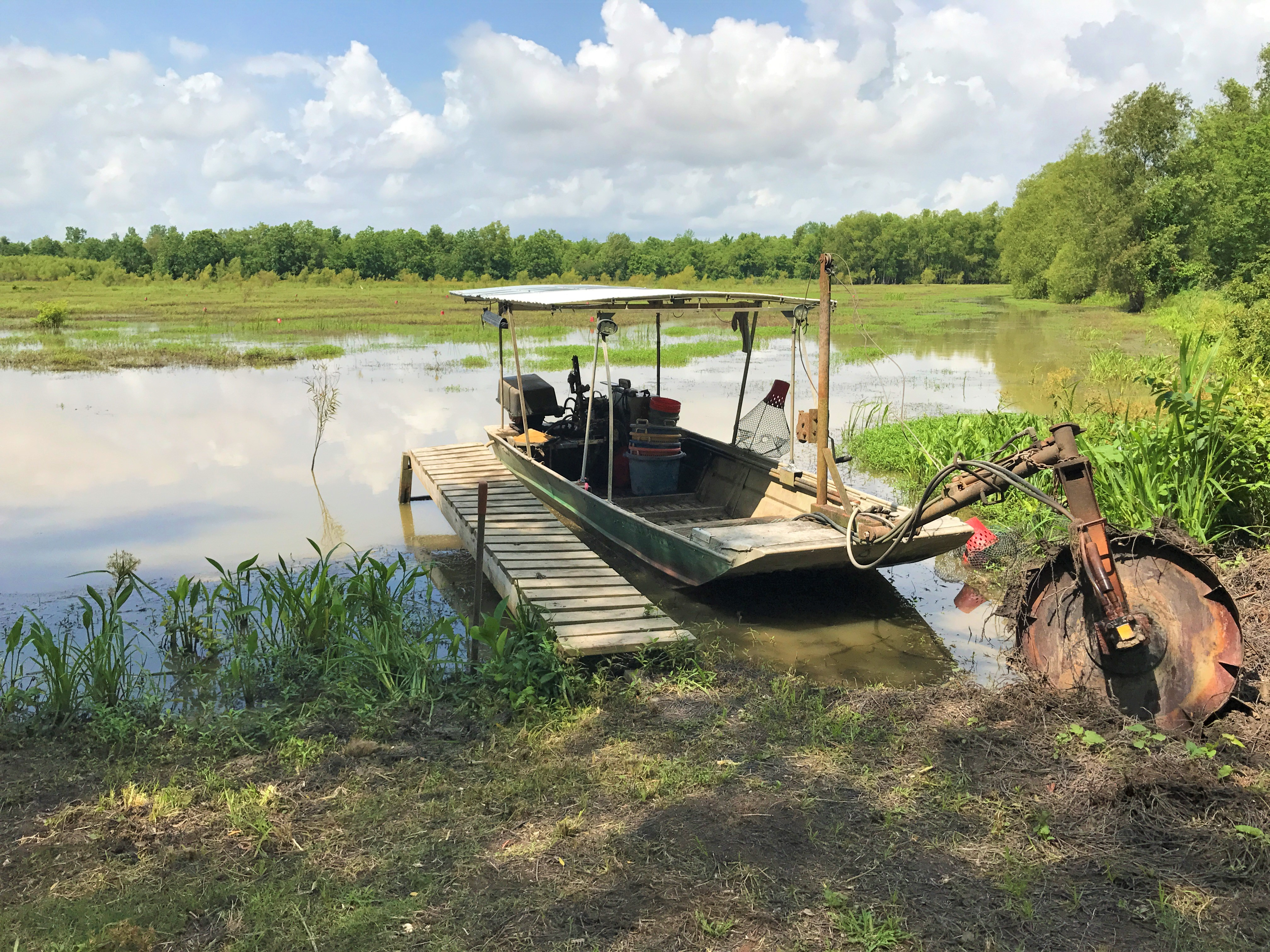 From Pond to Pot: Crawfishing in Louisiana